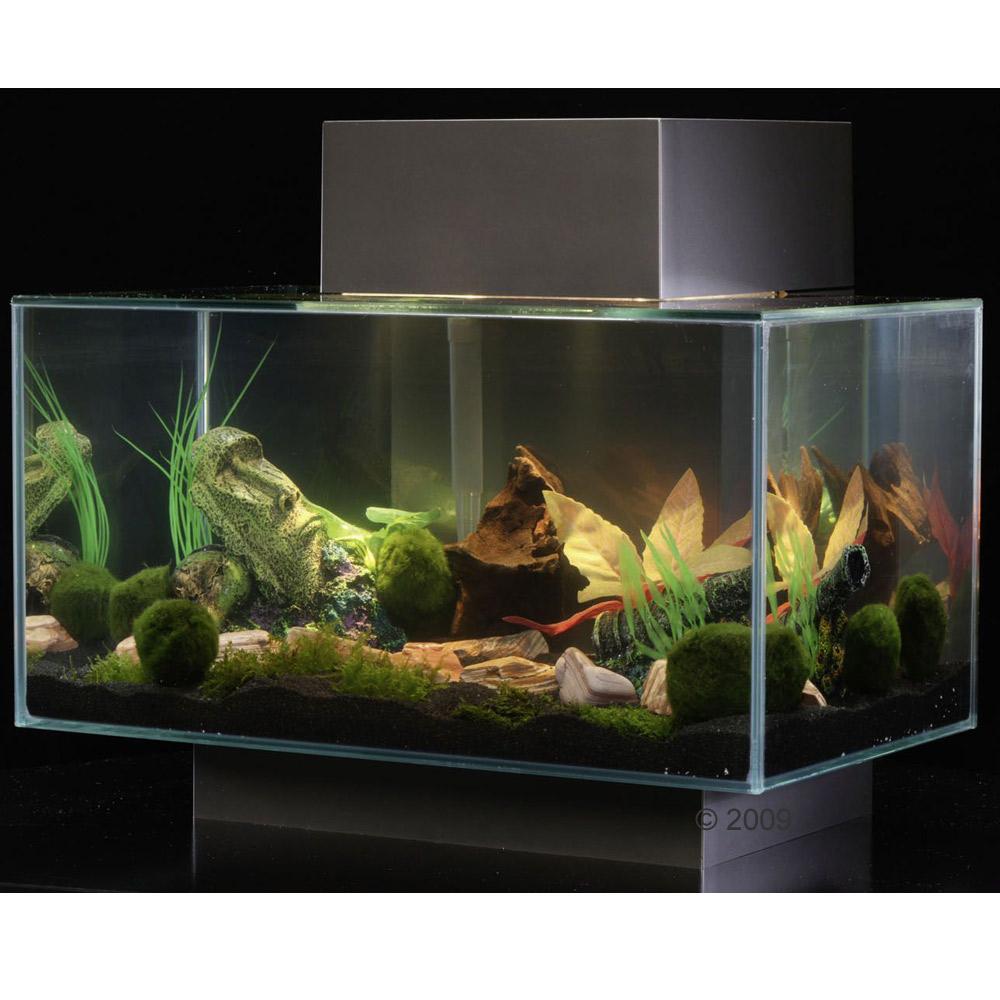 Fluval Edge Aquarium 25 Liter     zinnfarben of zooplus Mein Haustiershop (156970 0)