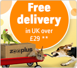 From 29 pounds Free Delivery