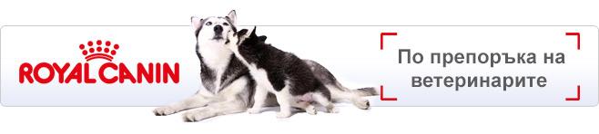 Royal Canin Vet