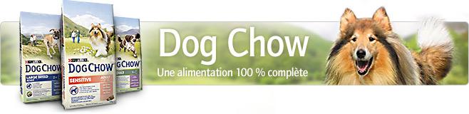 Croquettes pour chien Dog Chow