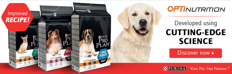 Pro Plan Small Breed Dog Food at zooplus with free P&P available