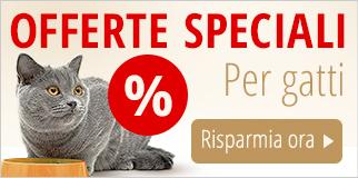 Offerte Speciali gatto