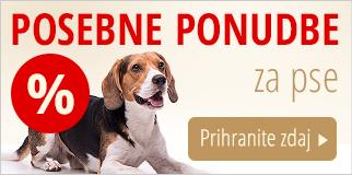 Posebne ponudbe: hrana & oprema za pse