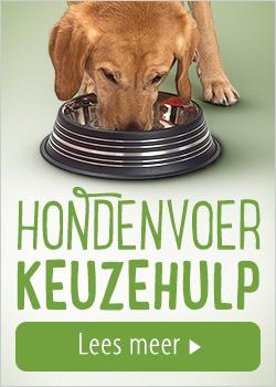Keuzehulp voor hondenvoer
