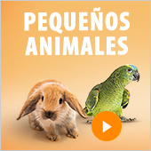 Zooutlet pequeños animales