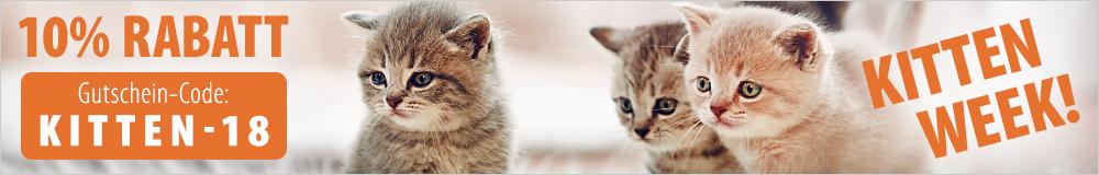 Jetzt 10% Rabatt auf alle Produkte im Kittenshop sichern!