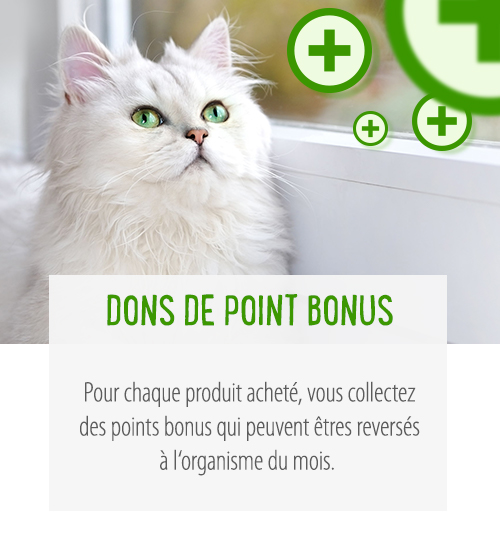 Dons de points bonus à l'association du mois !