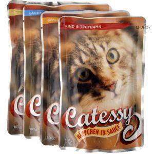 Catessy Pouch Probierpack 4 x 100 g