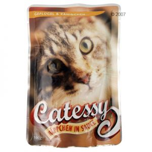 Catessy Pouch 6 x 100g