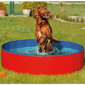 Doggy Pool Hundeplanschbecken