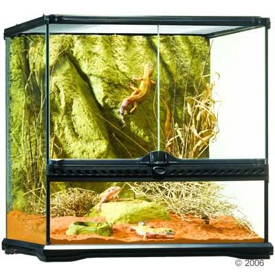 heizung bei plastikterrarium f r insekten wer weiss. Black Bedroom Furniture Sets. Home Design Ideas