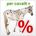 Offerte Speciali Cavalli