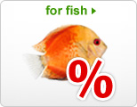 Special Offers: Aquarium Equipment & Supplies