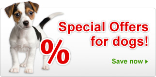 Special Offers: Dog Supplies & Accessories