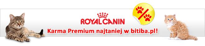Royal Canin karma dla kot