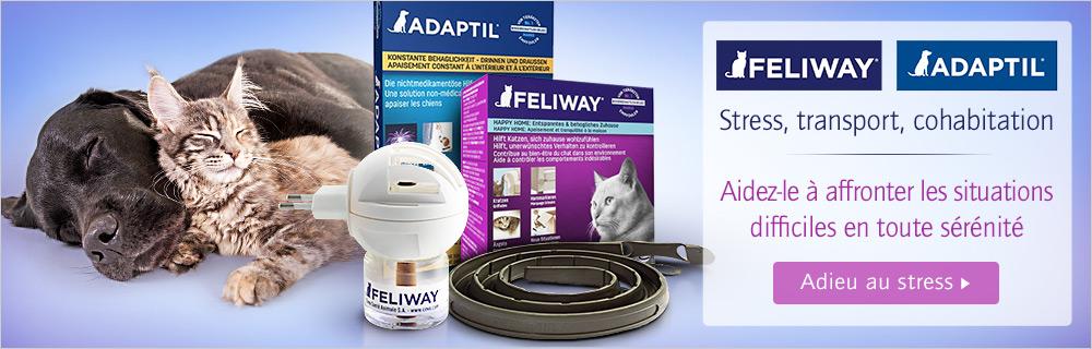 Feliway et Adaptil pour chat et chien
