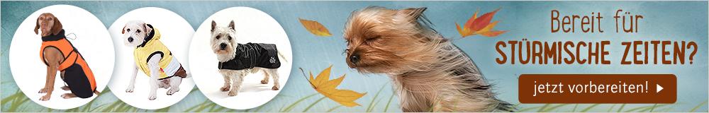 Günstige Hundebkleidung für die kalten Tage finden Sie hier!