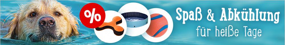 Schwimmspielsachen