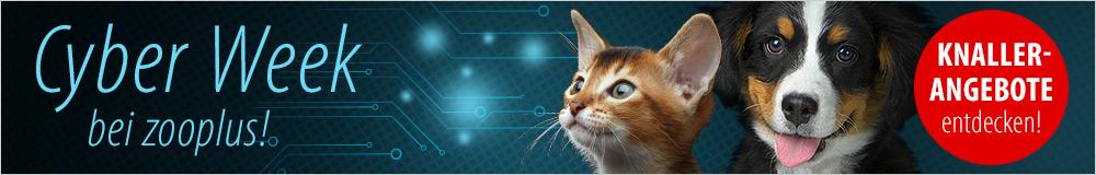 Cyber Week - tierisch gute Angebote!