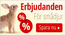 Specialerbjudande för smådjur