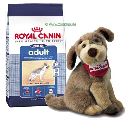 Royal Canin Size und Stoffhundi