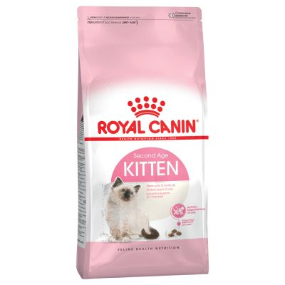 royal canin kitten trockenfutter