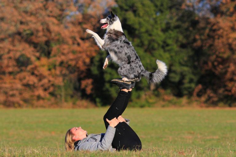 dogdance - hund tanzt