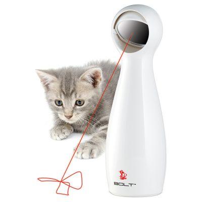 Katze jagt einen Laserpointer