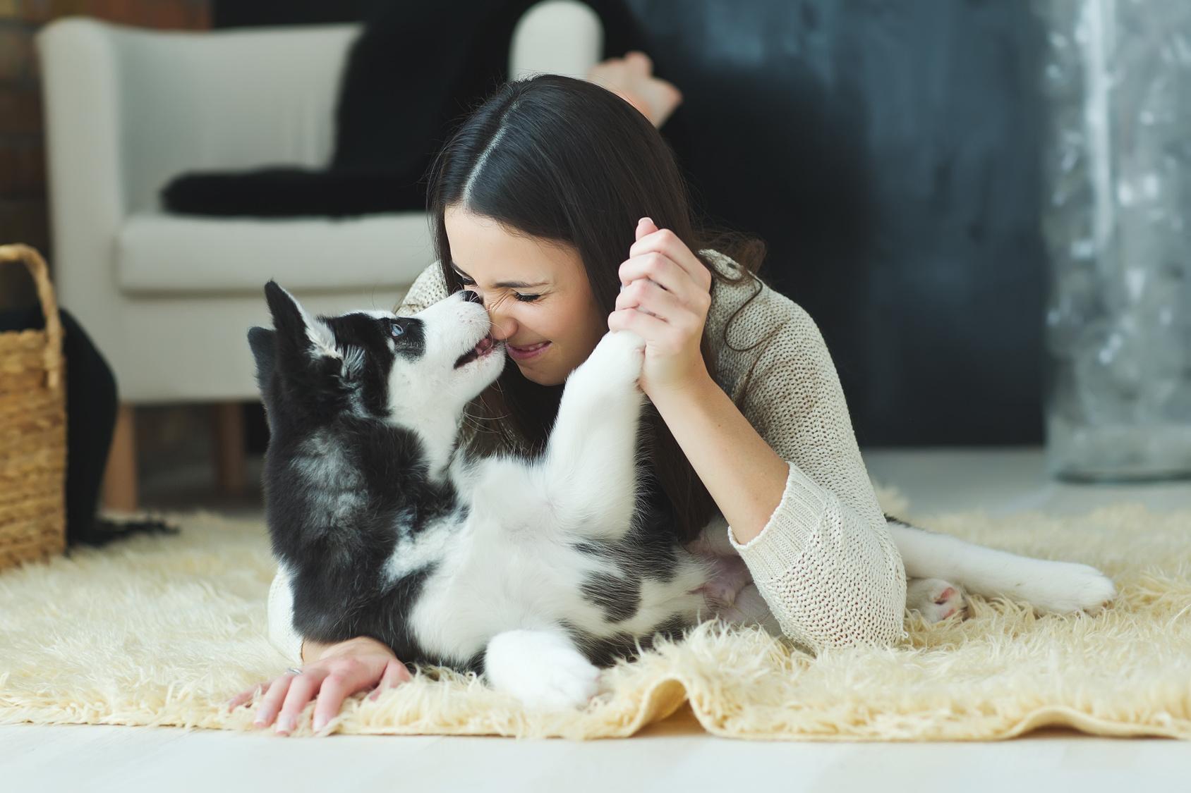 Mit hund meinem geschlafen ich habe hilfe_ich_habe_ausversehen_mit_meinem_hund_geschlafen —
