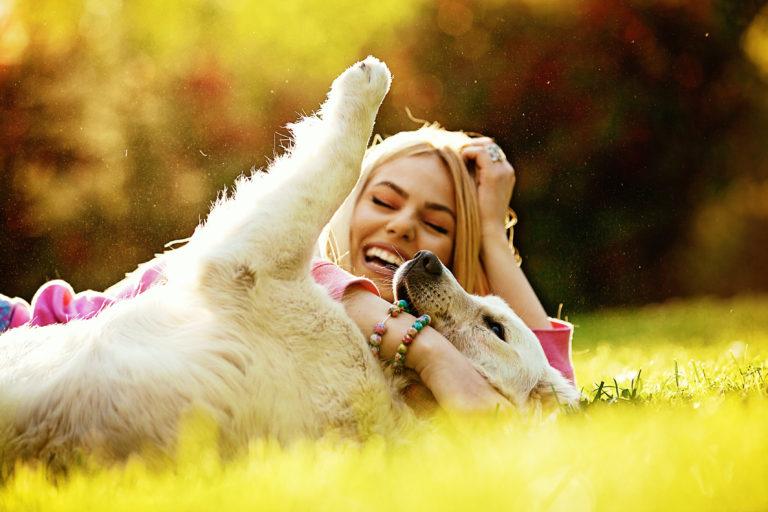 yv grunde til, at hunde gør vores liv bedre