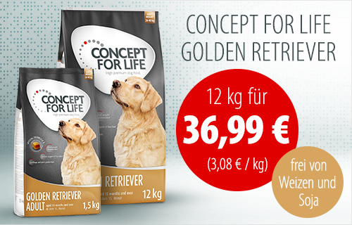 Concept for Life - Golden Retriever - Banner