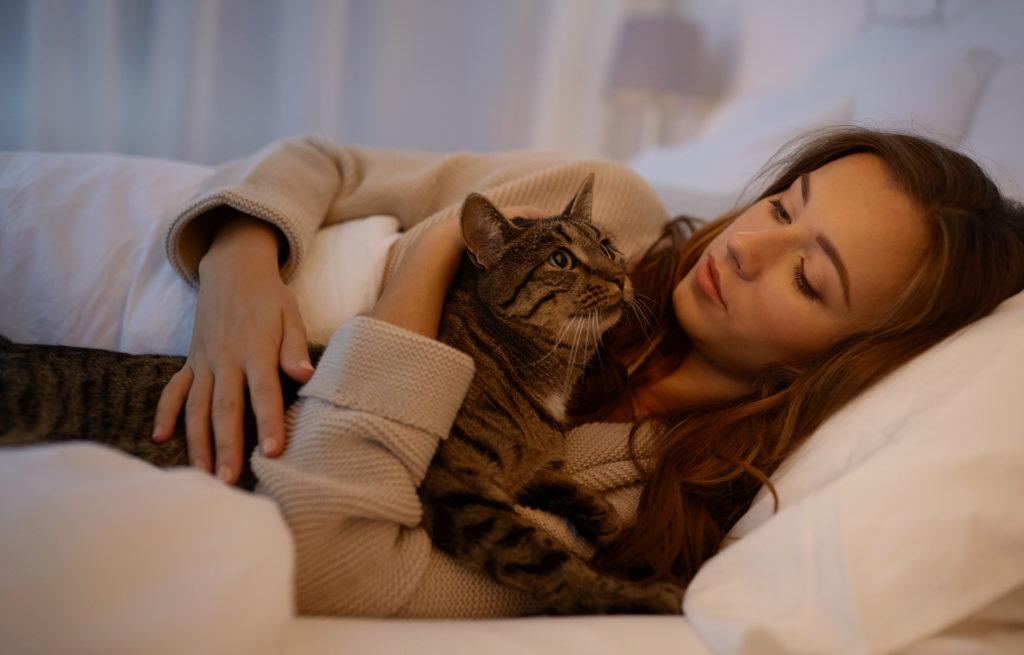 Katze miaut nachts im Bett