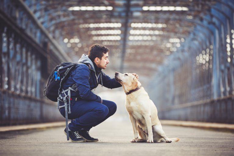 man mit hund bahnhof