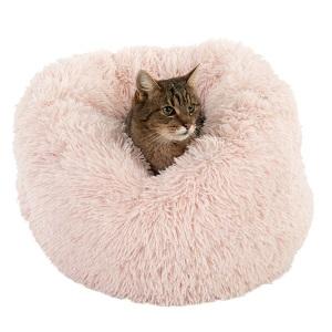 Katze im Katzenbett
