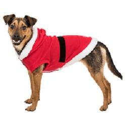 Hund mit rotem Hundemantel