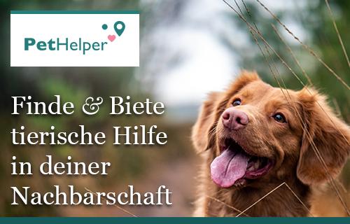PetHelper