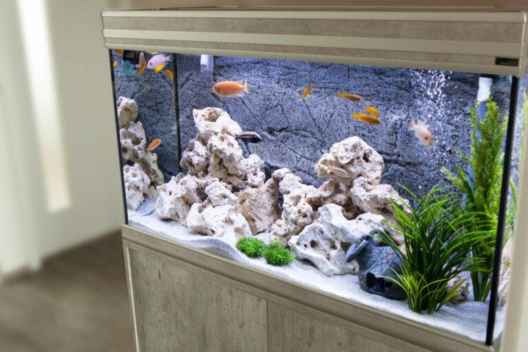 Aquarium in einer Wohnung