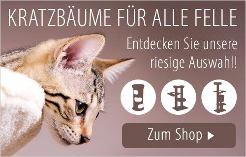 DE_Breeds_Page_Cat_Accs_Kratzbaum_Test_B
