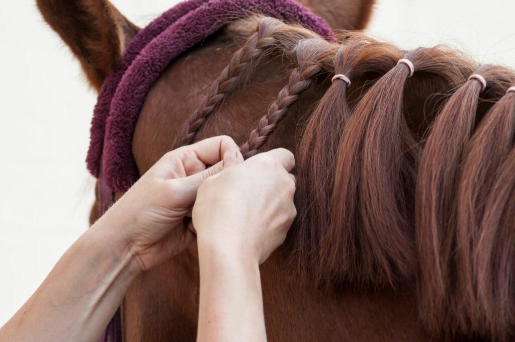 Pferdehaare werden geflochten.
