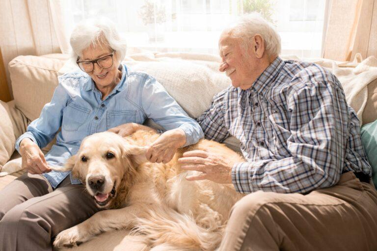 Dementer Hund mit seinen Herrchen