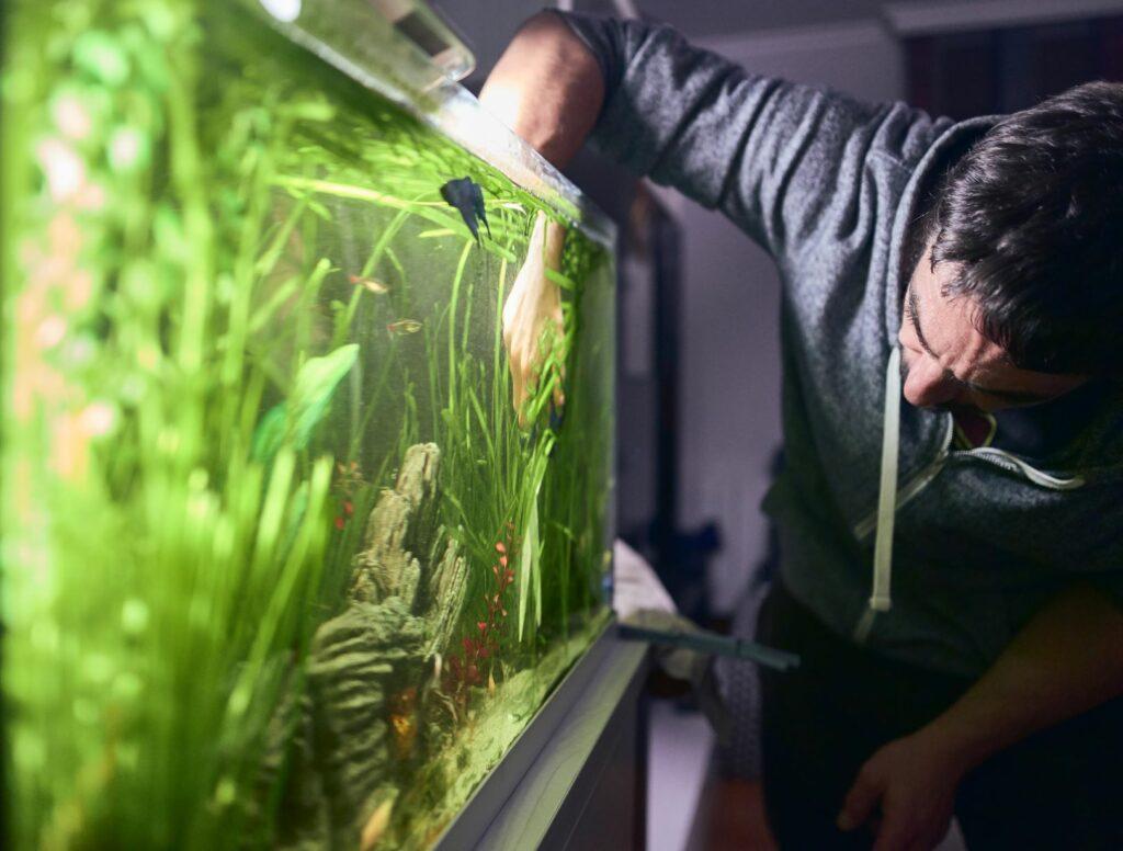 Mann steht vor einem Aquarium.
