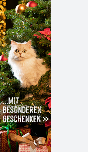 DE_right_christmas_campaign
