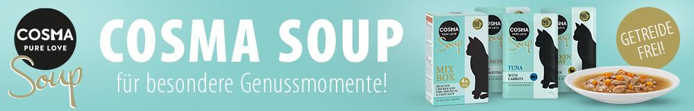 DE_Cosma_Soup_2020_02