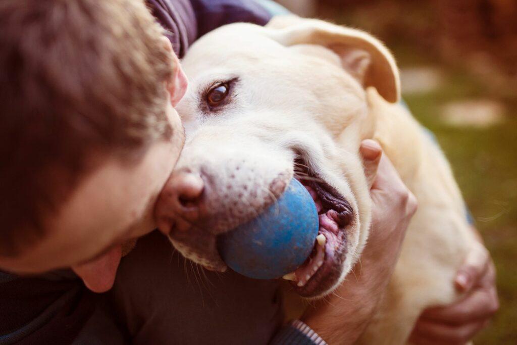 Hundehalter mit seinem Hund.