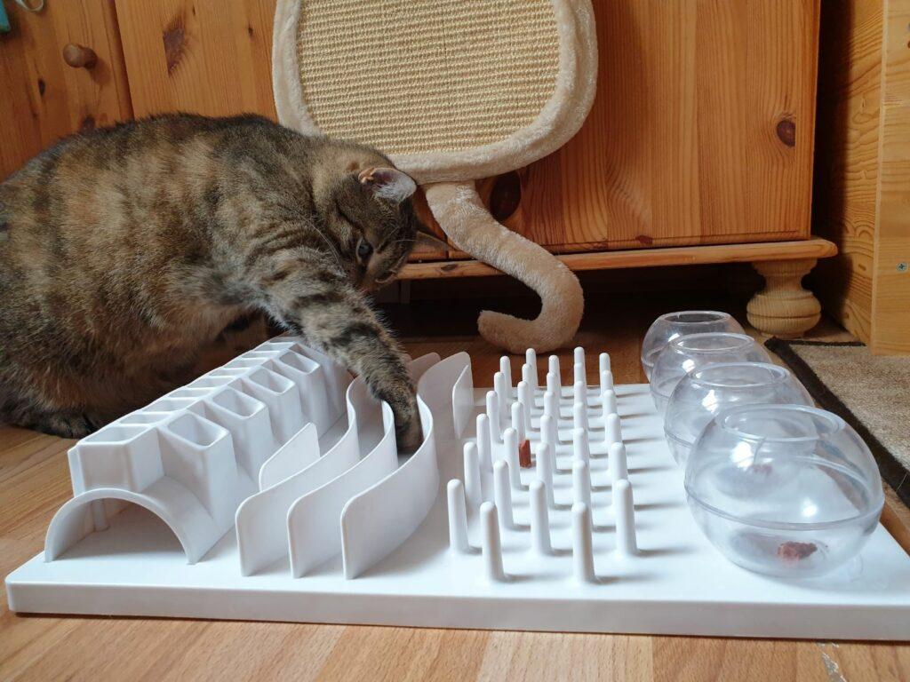Intelligenzspielzeug für Katze zum Abnehmen