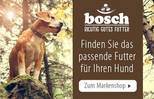 Bosch_HPC_Magazine_02032021