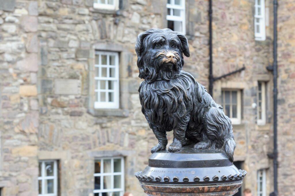Skye Terrier: Greyfriars Bobby