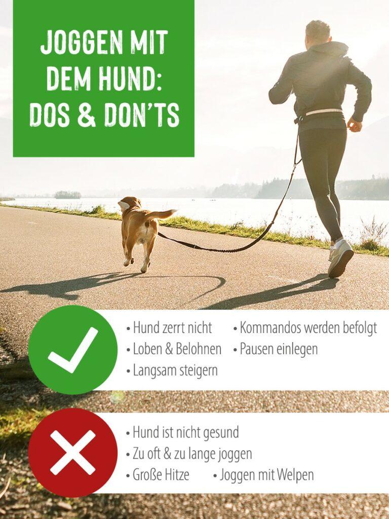 Mann mit Hund Jogging Infografik