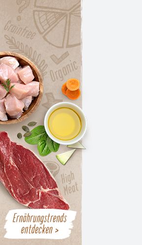 foodtrends_campaign_BG_right