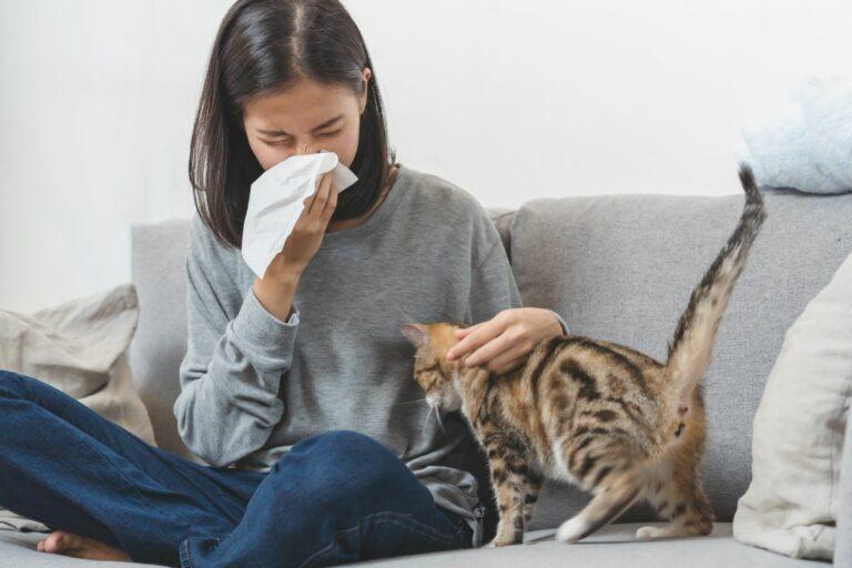 Frau niest wegen Katzenallergie